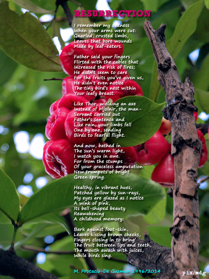 Poem by M. Protacio-De Guzman Photo by Mike De Guzman
